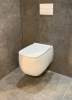 Flavio Cosenza rimless design wandtoilet mat wit incl. softclose zitting en quickrelease 1208925065